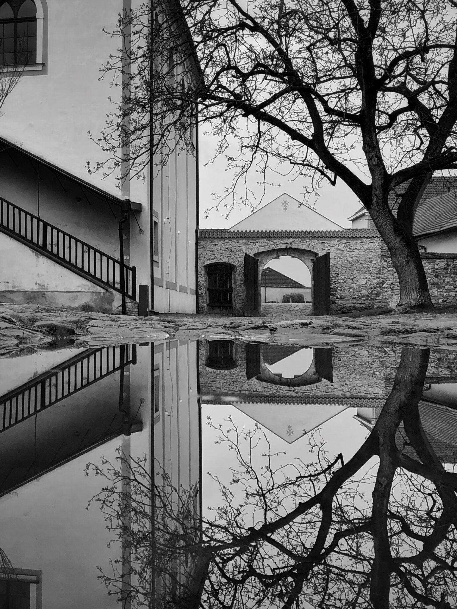Zrcadlení | foto: Pavel Tichý | 1. místo kategorie 3 (nad 18 let)