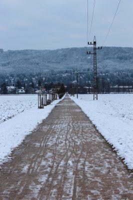 Alej v zimě | foto: Annelie Kubátová