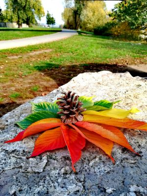 Podzimní barevná nostalgie | foto: Helena Kučerová