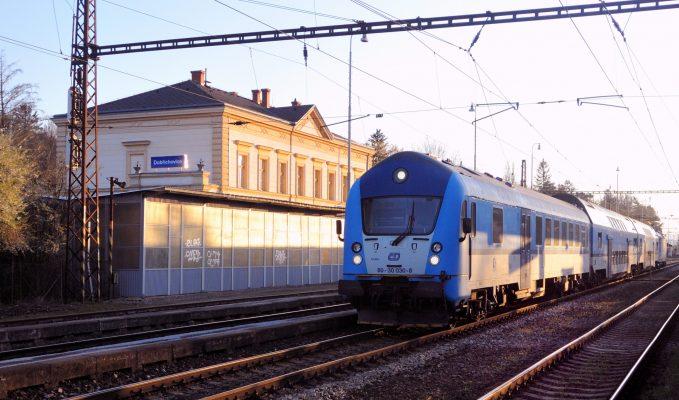 Modrý sysel   foto: Jiří Novák ml.