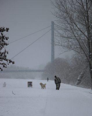 Zimní procházka | foto: Hynek Moravec